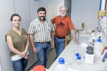 Biologists Sophie Gryseels, Herwig Leirs and Erik Verheyen will investigate the cause of the 2017 Ebola outbreak in northern Congo (Photo: University of Antwerp)