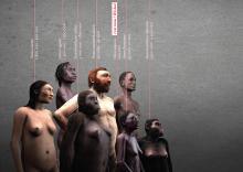 Geannoteerde versie van de visual van de Galerij van de Mens met de mens en zes voorlopers