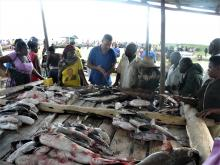 Researcher Maarten Van Steenberge visits a fish market in Uganda (c) Maarten Van Steenberge, RBINS