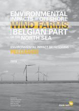 Rapport Effecten van windmolenparken op zee: update