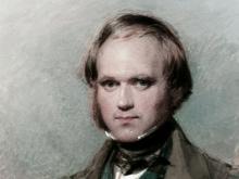 Charles Darwin à la fin des années 1830, aquarelle de George Richmond