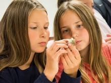 Deux jeunes filles observent un fossile de près (photo : Thierry Hubin)
