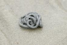 Een wormvormige hoopje zand op onze stranden