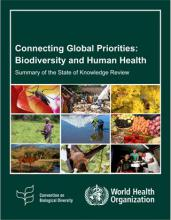 UN report on biodiversity