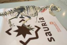 un dinosaure miniature en réalité augmentée sur l'application Sauria (photo : IRSNB)