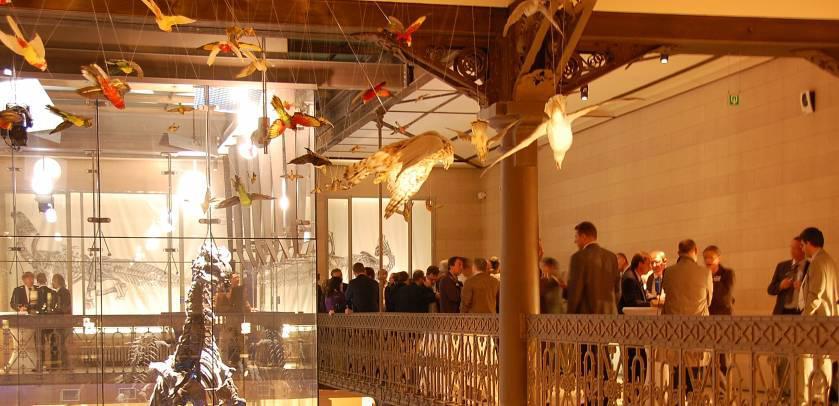 Veranstaltung auf dem Zwischengeschoss der Dinosaurier-Galerie
