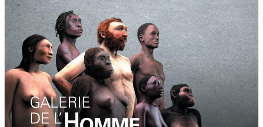 Affiche de la « Galerie de l'Homme - Notre évolution, notre corps »