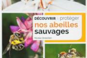 Nos abeilles sauvages