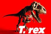 T. rex visual