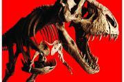 T. rex affiche