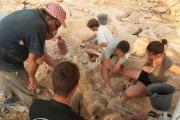 Paléontologues et amateurs réunis à Velaux, dans le Sud de la France, lors du « paléotrip » de 2012 (photo : Thierry Hubin / IRSNB)