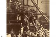 Assembly iguanodon 1883