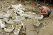 Opgravingen (Blagoveschenk 2005)