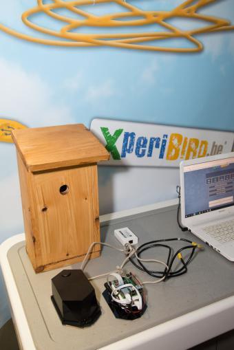 XperiBIRD.be_02