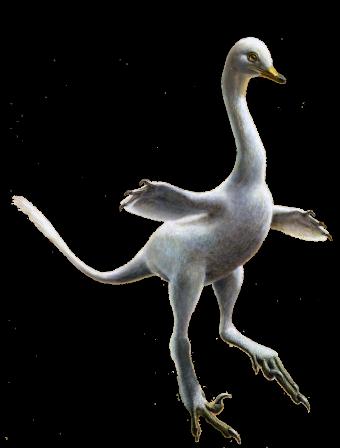 Reconstitution artistique de Halszkaraptor escuilliei. (Image: Lukas Panzarin)
