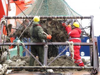 Antarctica - Trawl