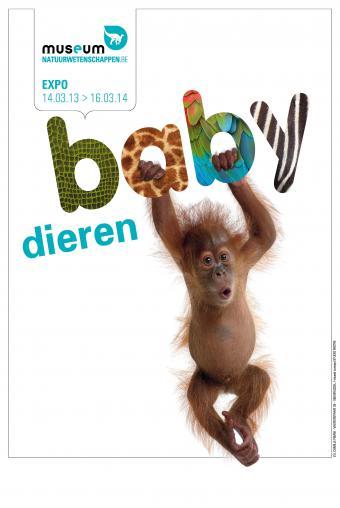 Affiche NL