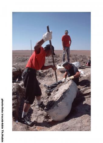 Excavations (Mongolia 2001)