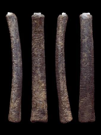 The Ishango bone 4 times