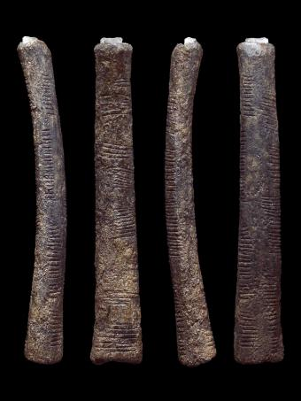 Le bâton d'Ishango 4 fois